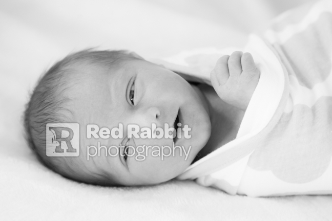 Baby photography trowbridge