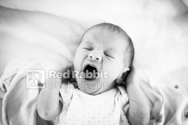 newborn baby photography trowbridge